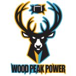 Wood Peak Power