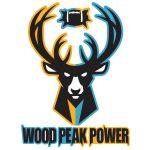 Wood Peak Power